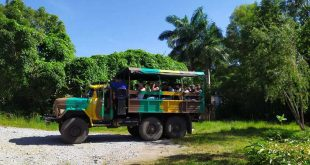 topes de collantes, turismo de naturaleza, gaviota