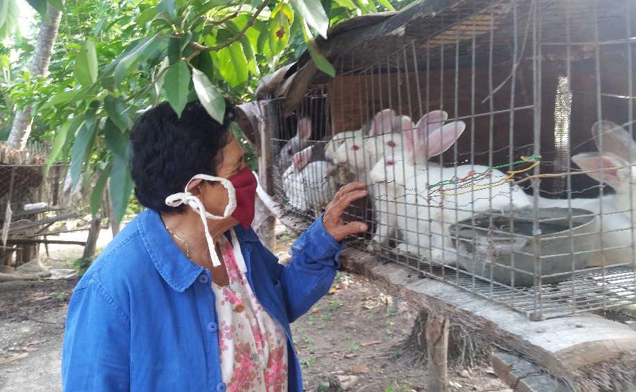 La cría de conejos es otro de los renglones que priorizan.