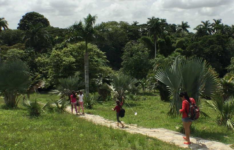 El Jardín Botánico de Sancti Spíritus atesora más de 800 especies vegetales.