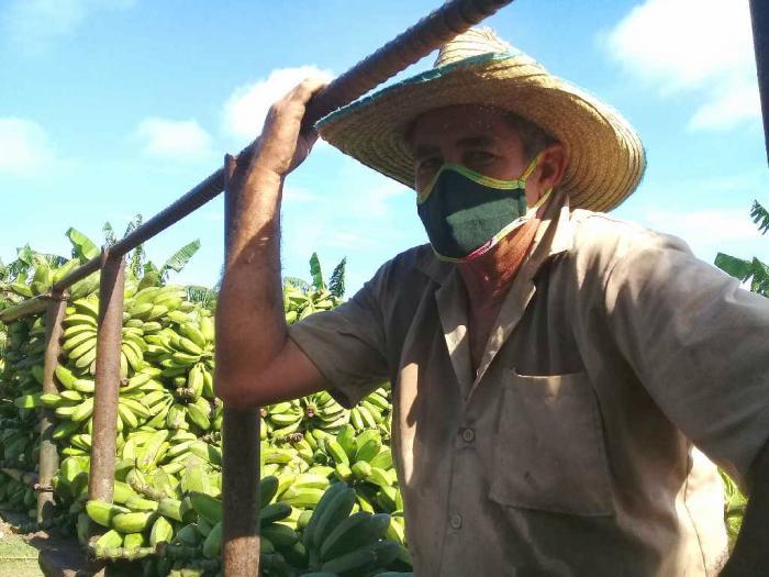 agricultura, alimentos, produccion de alimentos, san andres