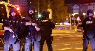 austria, ataque terrorista, viena, muertes, cuba, bruno rodriguez