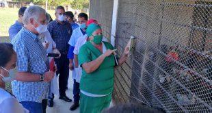 cuba, miguel diaz-canel, presidente de la republica de cuba, isla de la juventud, visita gubernamental
