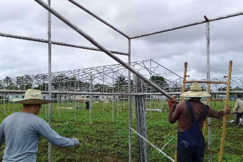 yaguajay, autoabastecimiento territorial, vegetales, hortalizas, fondo cubano de bienes culturales, casas de cultivo