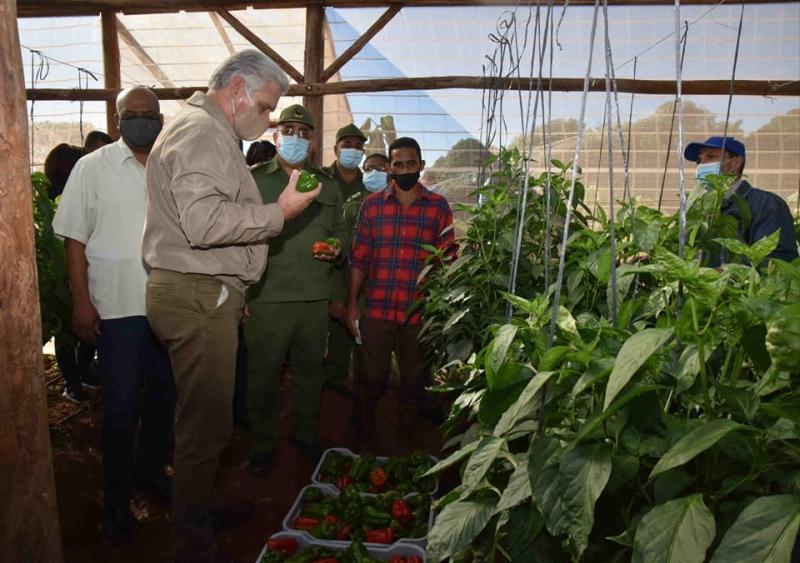cuba, la habana, visita gubernamental, miguel diaz-canel, presidente e la republica de cuba, construccion de viviendas, produccion de alimentos