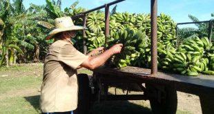 sancti spiritus, economia espirituana, fondos exportables, produccion de alimentos, agricultura, partido comunista de cuba