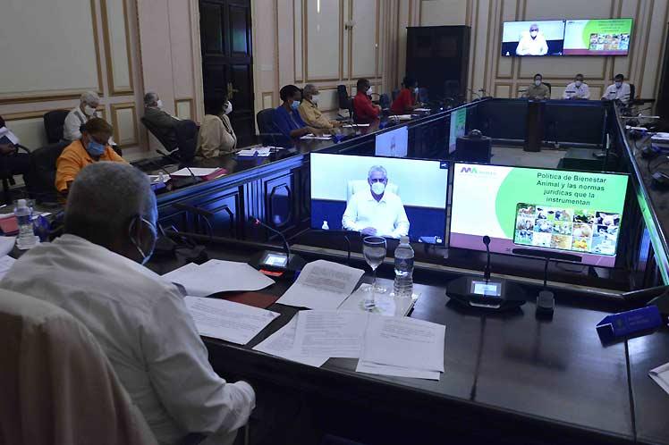 En la reunión, el presidente Miguel Díaz-Canel destacó la importancia de este decreto-ley. Foto: Tony Hernández.