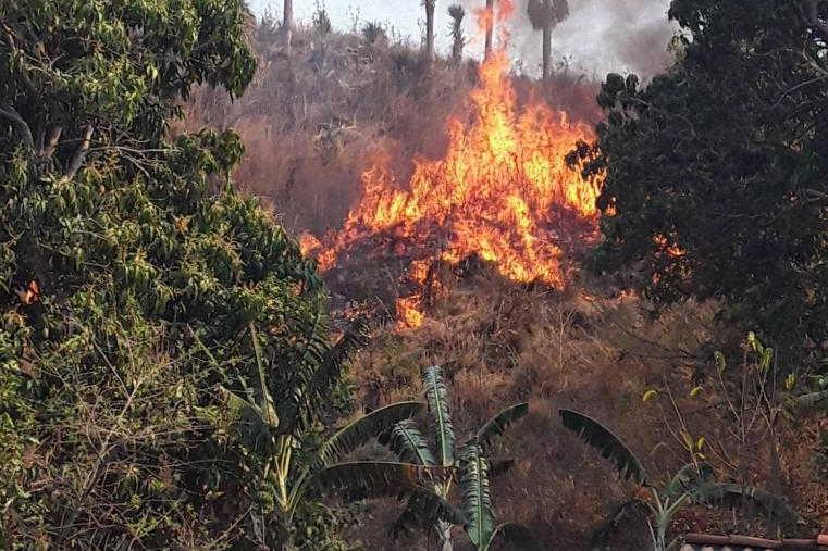 cuba, incendios forestales, guardabosques