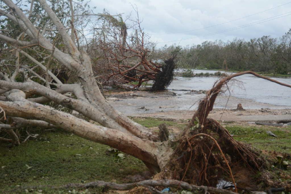 sancti spiritus, yaguajay, parque nacional caguanes, huracan irma