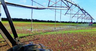 sancti spiritus, agricultura, precios, electricidad, consumo electrico, tarea ordenamiento, economia cubana