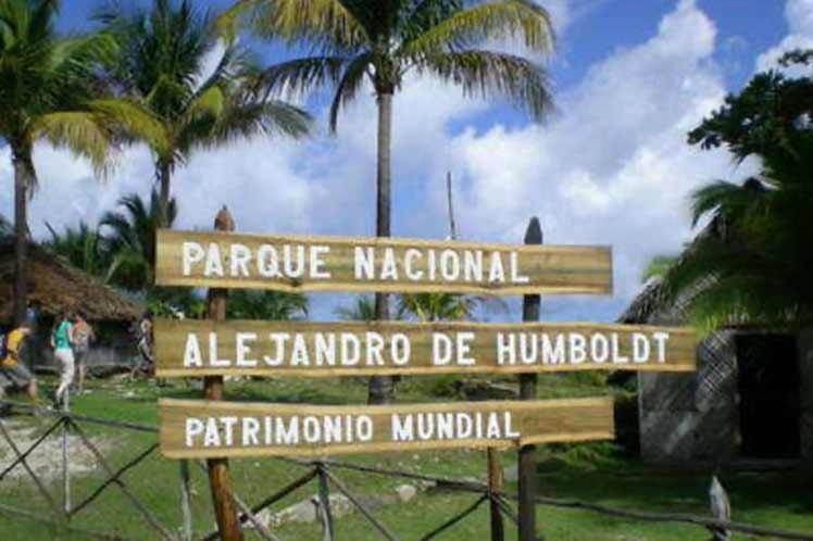 Desde 2017 no se registraba un hecho similar en el Parque Nacional Alejandro de Humboldt. (Foto: PL)