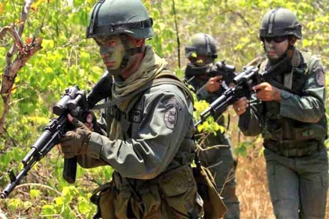 venezuela, colombia, fanb, venezuela-colombia, paramilitares