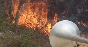 guantanamo, parque nacional alejandro de humboldt, incendios forestales, holguin