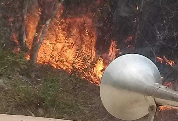 cuba, holguin, guantanamo, incendio forestales, flora y fauna, bomberos