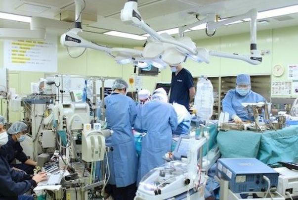 japon, pulmon, trasplante, pandemia