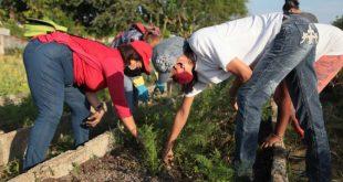 sancti spiritus, trabajo voluntario, primero de mayo, dia del proletariado mundial, dia de los trabajadores