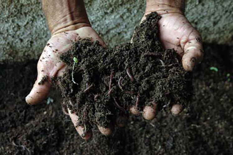El suelo sigue siendo el principal problema medioambiental de la provincia. (Foto: PL)