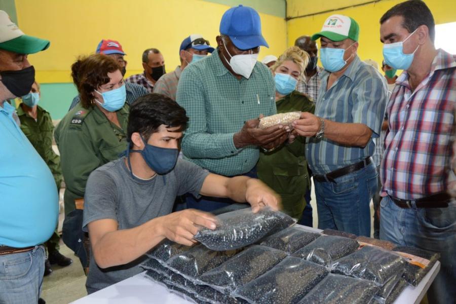 sancti spiritus, agricultura, agricultura sancti spiritus, tarea ordenamiento, yaguajay