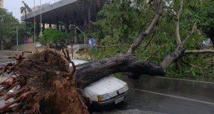 cuba, la habana, tormenta local severa, vientos, lluvias, desastres naturales, insmet