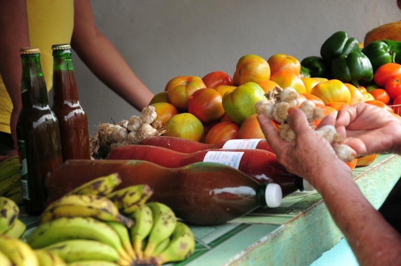 sancti spiritus, ilegalidades, delitos, multas, productos agropecuarios, pnr, policia nacional revolucuionaria, economia cubana
