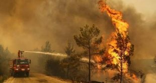 turquia, desastres naturales, incendios forestales