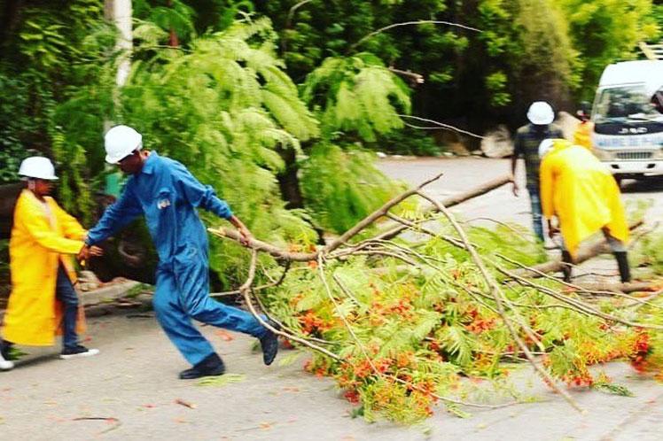 Los brigadistas de Protección Civil despejaron varias carreteras en Puerto Príncipe. (Foto: PL)