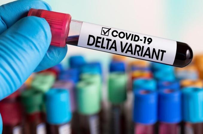variante delta, coronavirus, covid-19