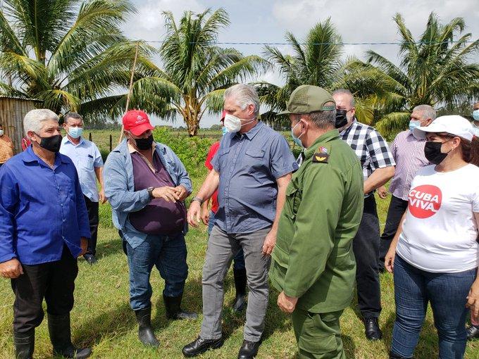 Hasta el polo productivo Hermanos Barcón llegó el presidente cubano en Pinar del Río. (Foto: @demevilla)