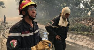 argelia, incendios, incendios forestales, desastres naturales