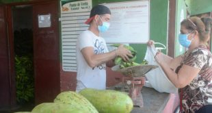 sancti spiritus, agricultura en sancti spiritus, acopio, productos agropecuarios, mercados de nuevo tipo, produccion de alimentos