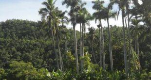 yaguajay, sancti spiritus, areas protegidas, citma, medio ambiente
